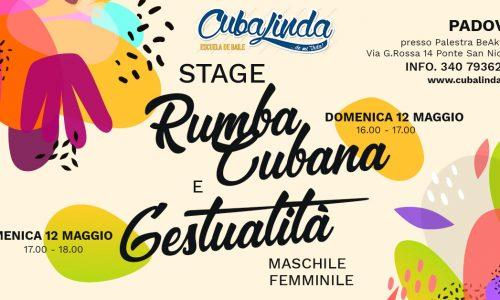 stage rumba cubana e gestualità maschile gestualità femminile